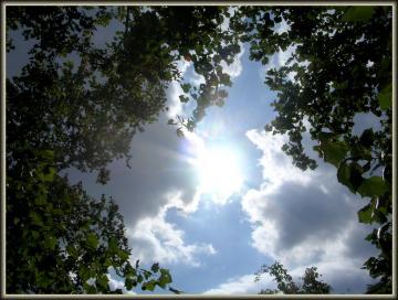medium_Soleil_d_orage_20-Sep-06.jpg