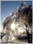 soleil-de-glace.2_150.jpg